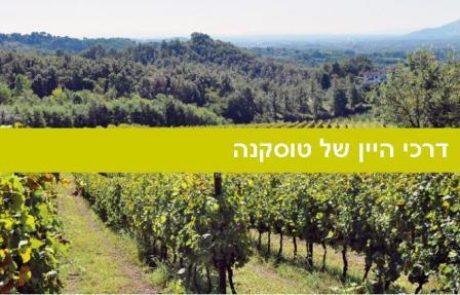 14 דרכי היין של טוסקנה